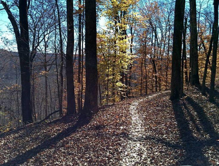 Big Hollow Trail